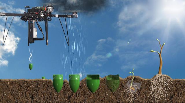Combattere la deforestazione piantando alberi con i droni